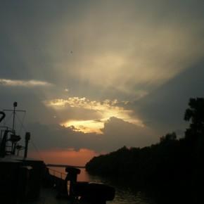 природа Дуная