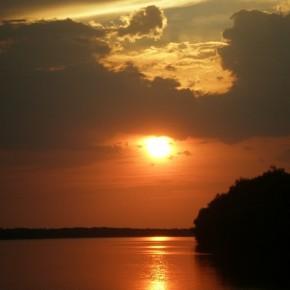 пейзаж реки Дунай