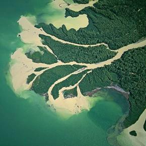 дельта Дуная фото (космос)
