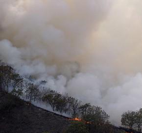 пожар в Дельте Дуная