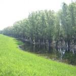 Национальный парк Дунай-Драва