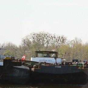 Венгерский флот, BEZDAN, самоходная баржа, толкач