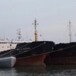Украинское Дунайское Пароходства потратила 29,5 млн. грн. на отстой.