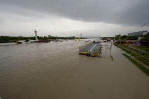 Дунай вышел из берегов