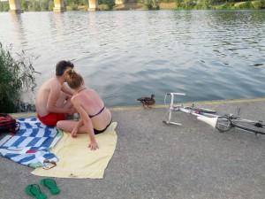 Жара на берегах Венского Дуная